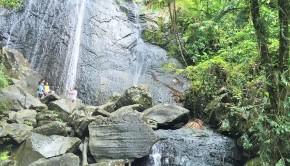 Yunque 2