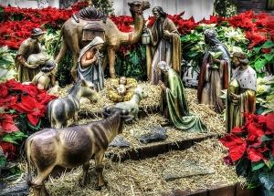 nativity Pixabay -596934_1280