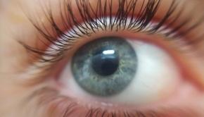 eye-Pixabay - 2153580_1280