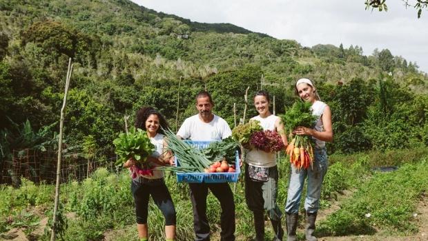 De izquierda a derecha: Limari Cora, Edwin Rosario, Daniella Rodríguez, Amalia Hernández. Suministrada.